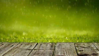 lutje per te kerkuar shi