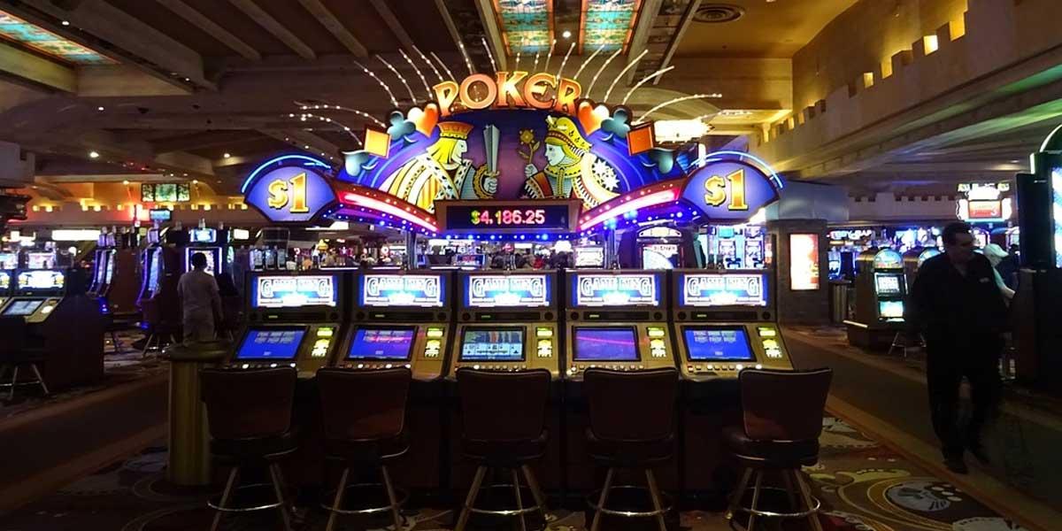 bixhozi lojerat e fatit