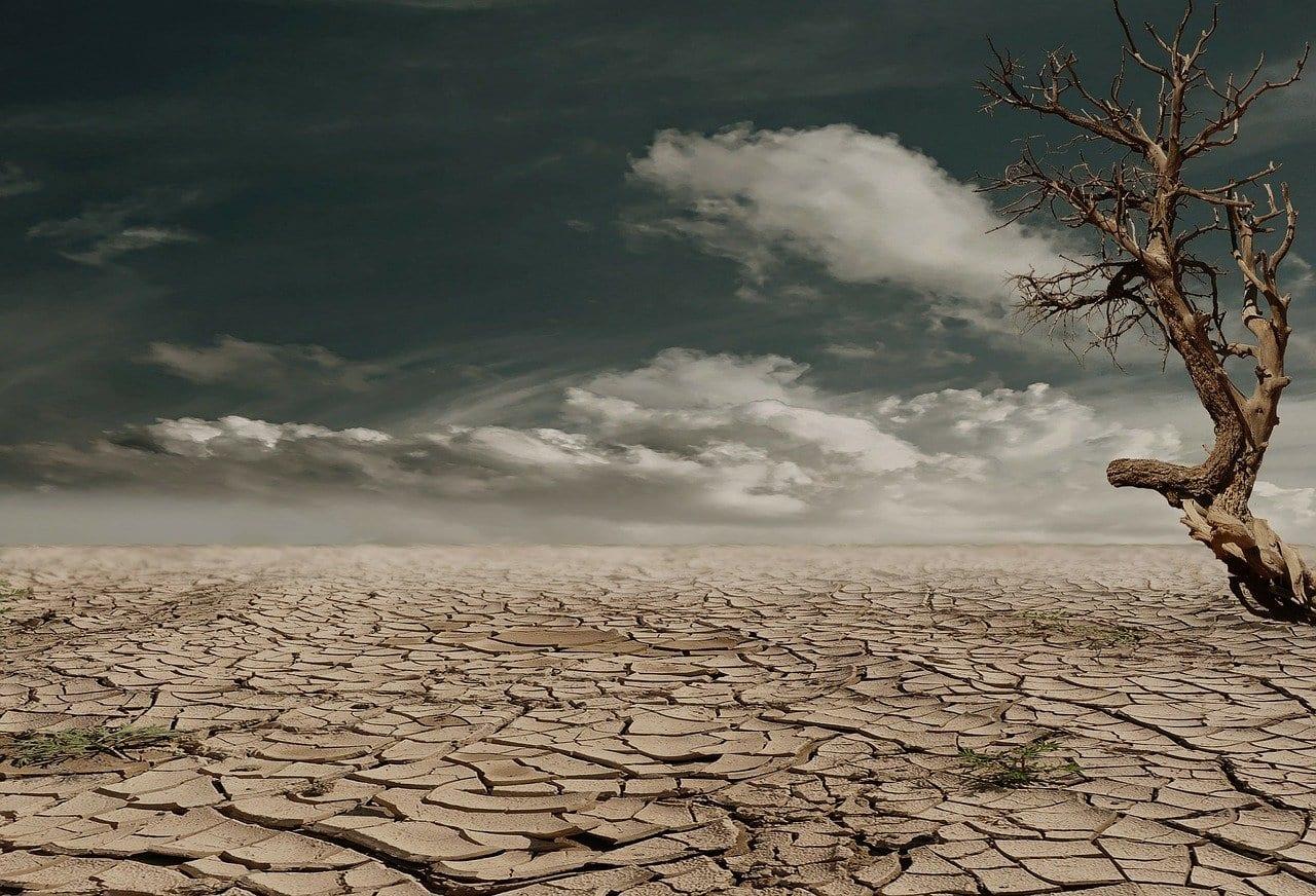 Shkatërrim shkretëtirë