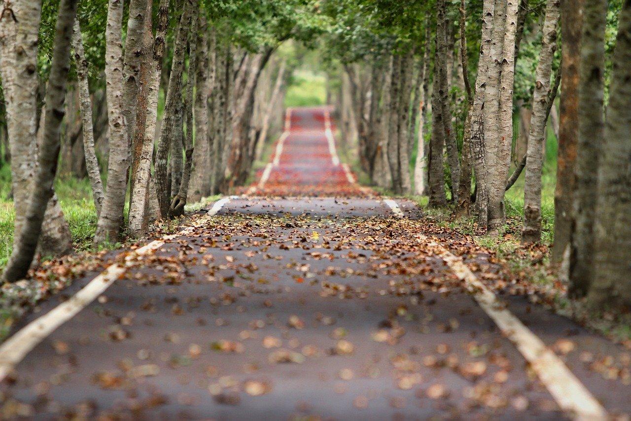 rruga e drejte dhe qendrueshmeria