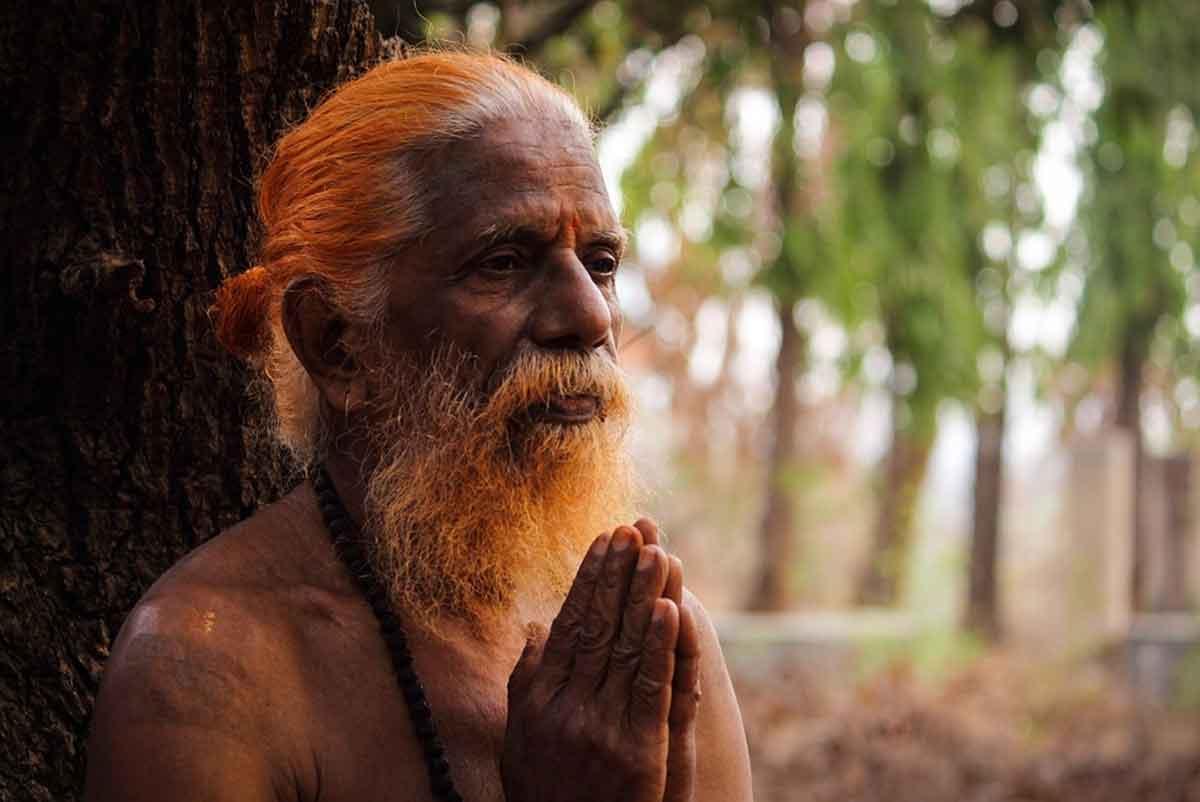 shenjtor indian